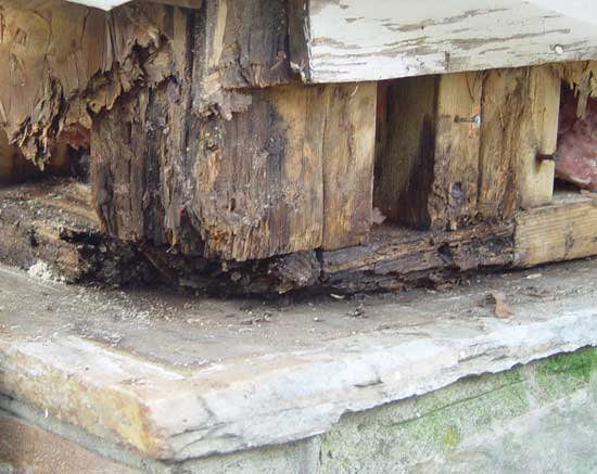 Decayed Wood Corner Fixing Our Historic House
