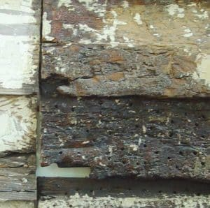 decayed wood siding treated with an epoxy consolidate